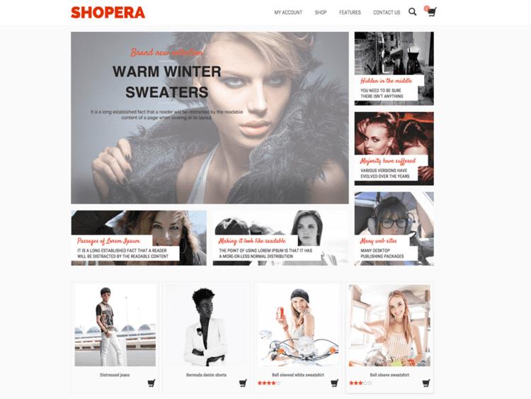 Imagem que aparece no wordpress quando é escolhido o tema Shopera